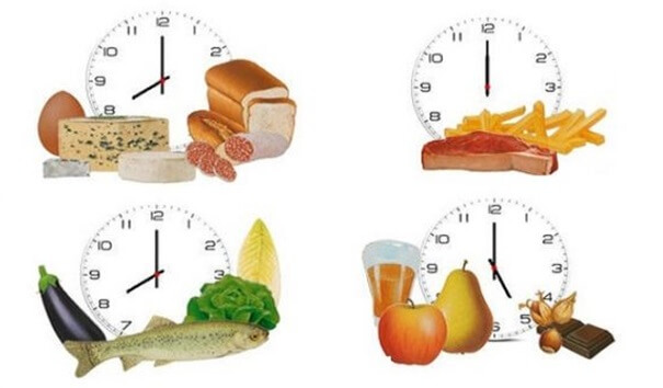 crononutrición día típico