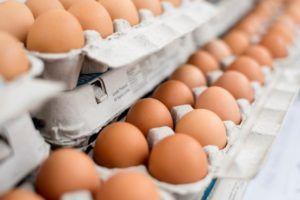 Come huevos para facilitar la pérdida de barriga