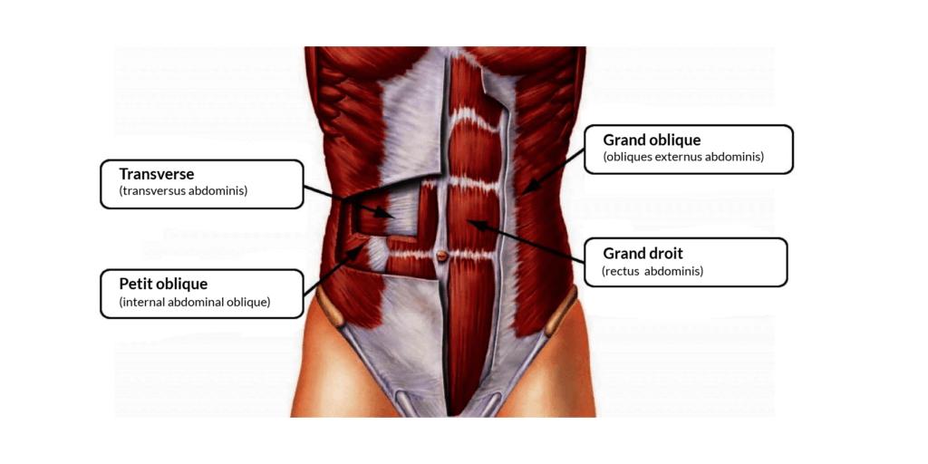 diagrama de abs