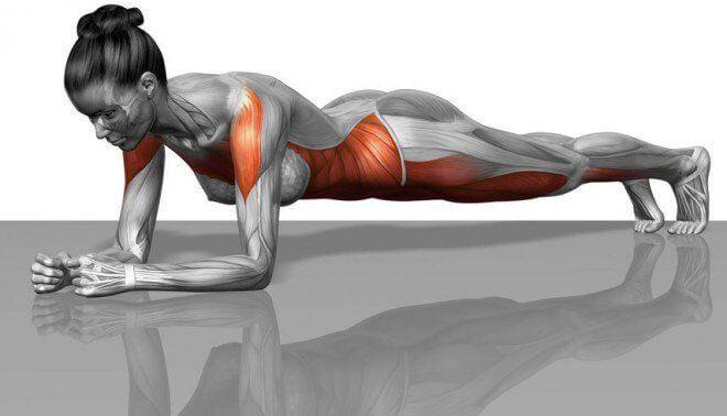 El tablón (ganancia): ¿eficaz o no?  + 10 ejercicios