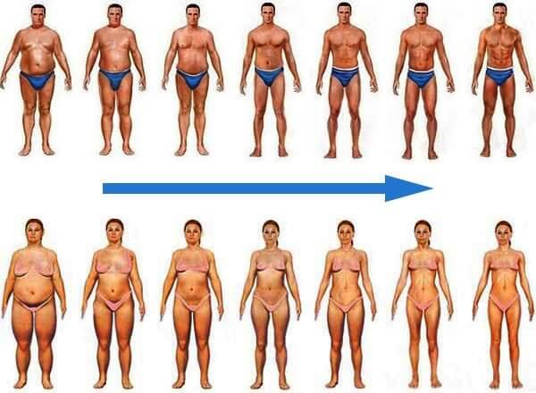 transformación masculina femenina